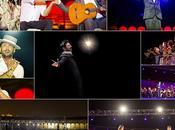 Bienal Flamenco 2010, crónica imágenes espectáculo inaugural cargo Miguel Poveda.