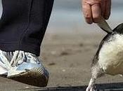 Dame mano caminemos juntos