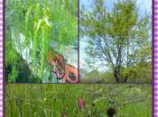 cielo primavera Mejorada Campo