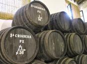Entender Vinos Jerez