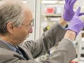 "Sintetizado primera cromosoma eucariota diseño"""