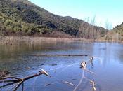 Puente Boquerones Piedra Cable