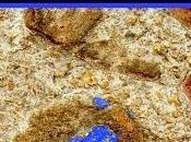adoquín azul, francisco gonzález ledesma
