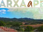 XIII Marxa Camp Morvedre 20Km ruta tierra