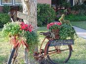 bicicletas solo para verano, también decorar