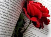 Libros para regalar este Sant Jordi
