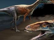 Salas Infantes Museo Dinosaurios