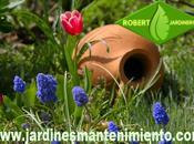 Trabajos mantenimiento jardines