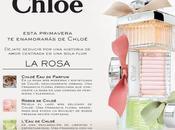 ¡Descubre cuál rosa Chloé!