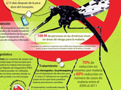 Mundial Paludismo, abril.