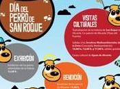 Perro Roque