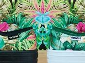 Calzado Victoria Verano 2014