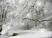 Soñar nieve.Sueño nieva, nevada, caen copos nieve