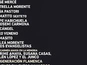Pamplona acoge primera edición festival Flamenco Fire