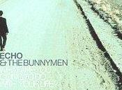Echo Bunnymen What Going With Your Life? (1999)