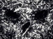 Póster trailer found footage terror 'v/h/s: viral'