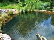 realidad piscinas naturales
