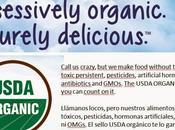 Yogur ecológico multibacterias