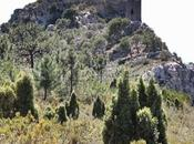 Castillo Montornés, senderismo Desierto Palmas