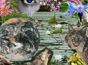 celebrará Internacional Diversidad Biológica