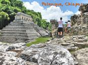 Palenque: Mejor Zona Arqueológica México Hemos Visitado
