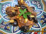 Conejo samira, marroquí