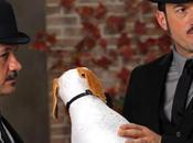 Pancho, perro millonario, falta talento ganas