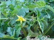 Flores Huerto