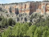 Cañones calcáreos Segobia Soria