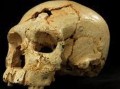 Atapuerca esclarece origen neandertales