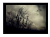 Estar nubes