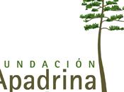 Apadrina árbol convierte blog neutral