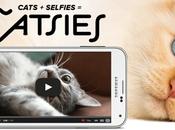 Selfies CATFIES cómo Virgin quería viral narices