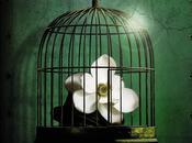 Reseña: Garden (Emma Romero)