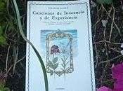 Canciones inocencia experiencia (Songs Innocence Experience) William Blake
