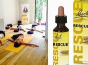 Yoga Flores Bach, tarde para relajarse