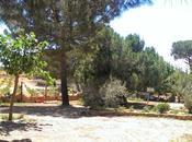 Nuestro finde Casas Rurales Derrubiá