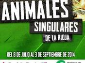 """Exposición """"Animales singulares Rioja"""" Casa Ciencias Logroño (España)"""