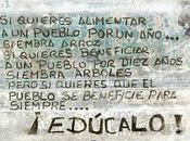 lista completa escuelas bonaerenses tendrán jornada extendida. Buenos Aires