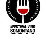 Festival Vino Somontano 2014