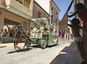 """""""hipomóvil"""": carro caballos sustituye camiones basura"""
