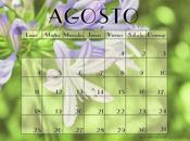 Freebie: Calendarios Agosto