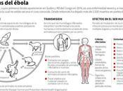 África ébola