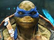 Tortugas Ninja, perfil