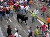 Prohibición toros oportunismo político