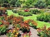 Jardín Botánico Wellington, Nueva Zelanda