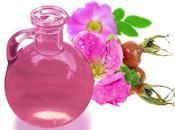 Descubre aceite vegetal Rosa Mosqueta