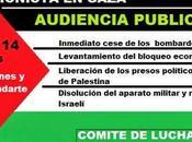 Audiencia Pública Palestina