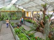jardín botánico Bogotá paraíso