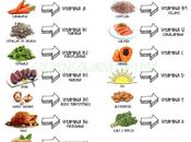 mejores fuentes cada vitamina
